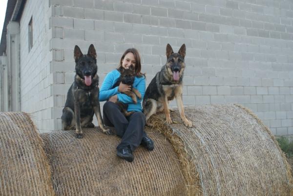 La Roser Feliu amb tres de les seves gosses: la Mina, la Fura i la Burka.