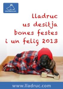 Felicitació Lladruc 2013