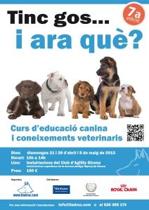 Curs educació canina i coneixements veterinaris