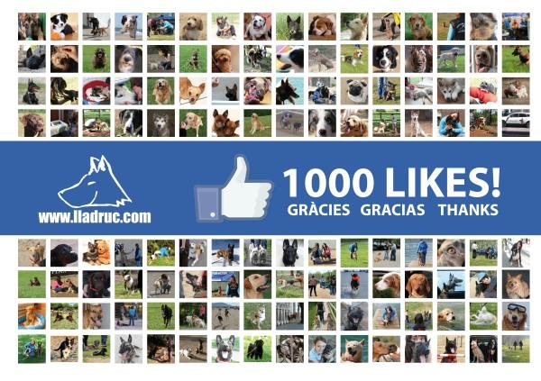 1000 seguidors al Facebook de Lladruc