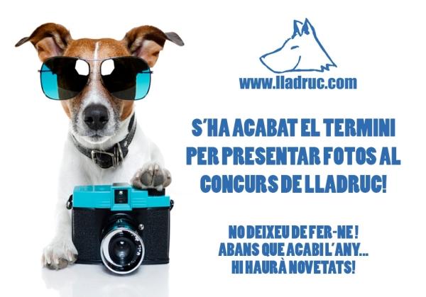 Tanquem termini per presentar les fotos al 5e concurs Lladruc!