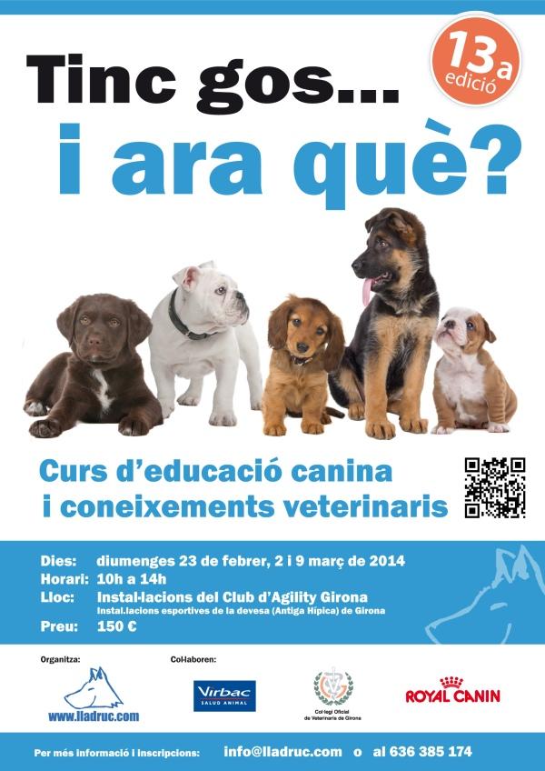"""Pòster 13a edició del curs """"Tinc un gos... i ara què"""": curs d'educació canina i coneixements veterinaris"""