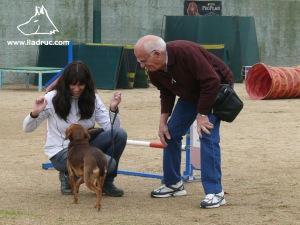 En Carles, que té més de vuitanta anys, ben atent, al comportament d'en Tro.