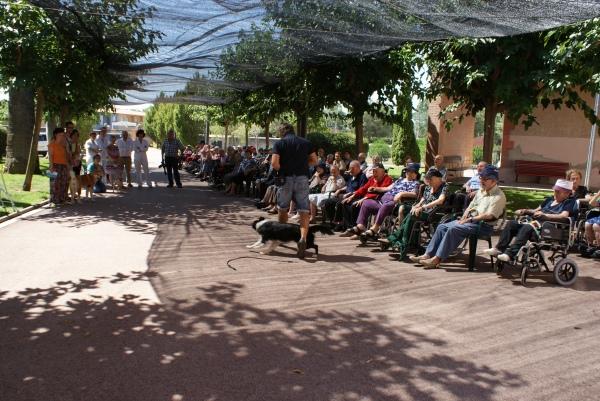 La Syra passant enmig de les cames davant dels avis i part del personal de la residència Toribi Duran