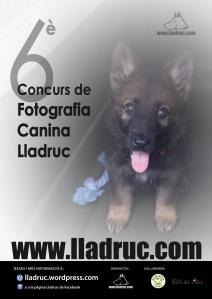 Concurs de fotografia canina Lladruc