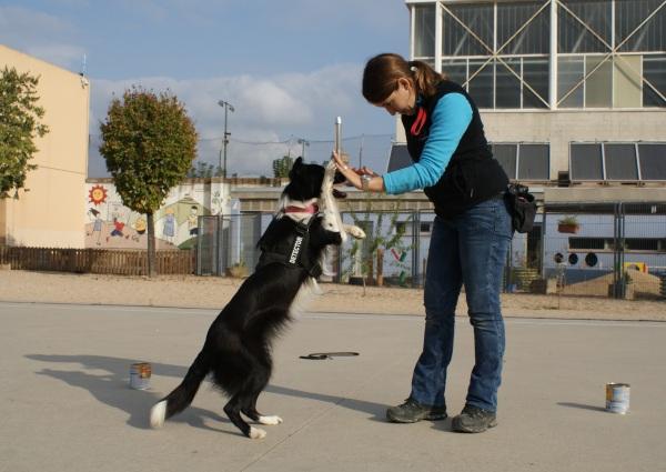 La Syra xocant la pota mentre camina a dues potes, aquesta habilitat va encantar a tots els nens!