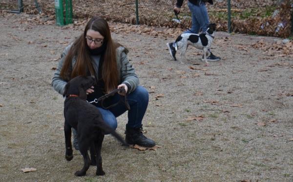 Una tendra imatge de la Lídia i en Sam amb la Gin aprenent a caminar al costat de la seva mestressa sense estirar la corretja