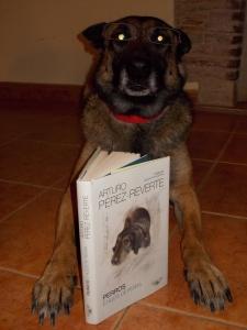 """La Cendra """"llegint"""" el llibre de l'Arturo Pérez-Reverte"""