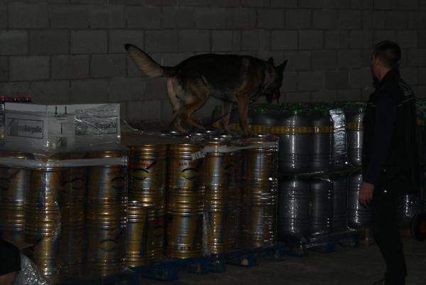 En Yago del Xixón, el gos d'en Paul, en plena acció