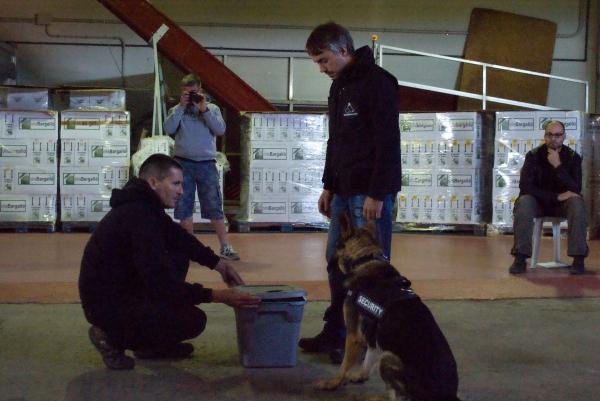 La Burka, gossa detectora d'explosius, millorant la marcació