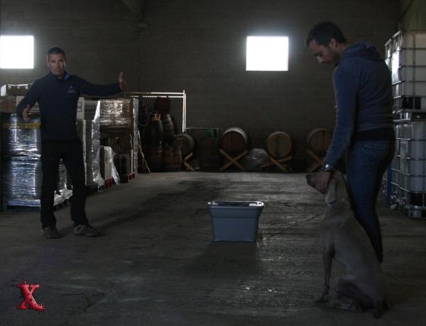 En Max i en Narcís ben atents a les explicacion d'en Paul. Gràcies per la foto Xicu!