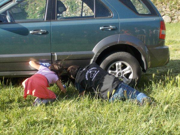 Una nena del públic i en David amagant la substància a sota el cotxe perquè la trobessin la Cendra i la Syra