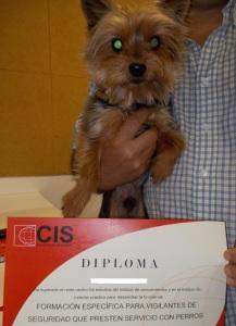 En Jacko, el relacions públiques del curs, va ajudar al seu propietari a obtenir el títol! :)