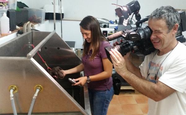 Gravació TV3 .jpg
